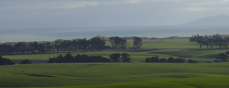 Paddocks looking out over Fortrose
